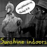 Sunshine Indoors! 18th April 2016