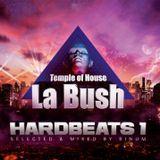 La Bush Hardbeats 1 (Selected and Mixed by Dj Binum)