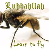 Luhbahllah-Learn to Fly [Setlist Dec 2013]