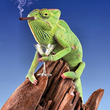 Social Chameleonism