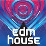 Club/Radio EDM (61)