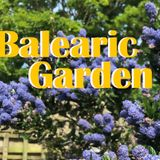 Balearic Garden at The Bickley June 2019