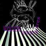 #191 ~ WelcomeWAVE.tres