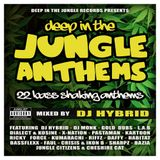DEEP IN THE JUNGLE L.P - PROMO MIX 2015 - DIALECT AND KOSINE