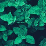 Pavel Costaneto – Wild Mint