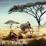 Dj Black - Jungle