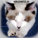 KBLZNBTZ 20