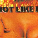 DJ Craig G, P-Nice & DJ Precise- Hot Like Fire Pt . II ( Tape Rip ) 1998