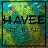 Havee - Celular (Original Mix)