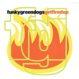 Funky Green Dogs - Fired Up! (Robbie Styles Remix)