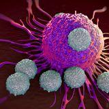 Immunology L08