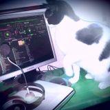Comfort 13 - Black Planet Radio Party 19/09/14 - Tamar Izraely's DJ set