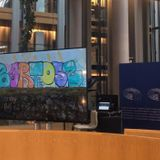 Wunder Bartek - From Europe, with love ! Messages des amis de Bartek au Parlement - janvier 2019