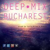 Deep Mix Bucharest #023 mixed by Distinct : Dark Moods