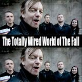 The Totally Wired World of The Fall