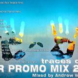 Andrew Wonderfull - Year Promo Mix 2013 (traces of life)