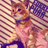 Furry Purr
