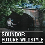 SoundOf: Future Wildstyle