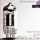 Trippin' Grooves - Episode 54 - Tu Be - Live @ DanceFM - 25.10.2014