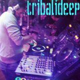 Electro Jackin Swing Mixed by Tribalideep aka Sean Marcucci Moore