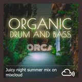 ORCA - Organic Drum and Bass