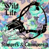 Wild Life - Stompers & Chompers 3