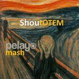 Tears for Fears vs Tom Staar - Shoutotem (Pelayo Mash)