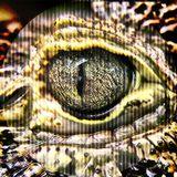 |skirmish003| 'crocodile tears'