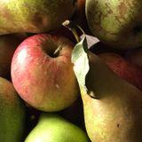 Ons programma serveert je vandaag een appeltje voor de dorst