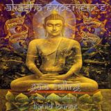 Akasha Experience - Gaia Calling mix by Liquid Lounge