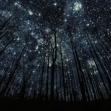 Vane Kost - Radio Utopia - Nightshift