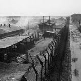 Visiting Holocaust Survivor Lecture - LaurenLeone [Audio]