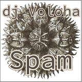 dJ Voloha - Spam