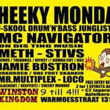 JAMIE BOSTRON (YARD ROCK / ONE FOOT SKANKIN) 02-06-2014 CHEEKY MONDAY