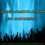 Alter-Nativo Radio En Concierto - A-Ha (Mix)