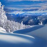 NASO pres SNOWY TALE [JANUARY] 2016