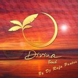 Set Dj Rafa Pontes para Divina Beach 2013/2014
