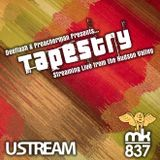 Deeflash Podcast - Tapestry 3 Warmup