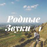 Dima Liutomski - Rodnye Zvuki #1