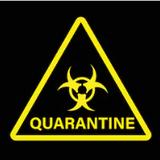 The Quarmup