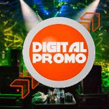Top 25 DigitalPromo.info Charts (April 2017)
