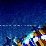 Atilla Altacı - Source of Life #008