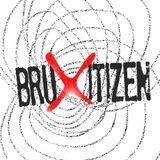 Bruxitizen 2 - Les jeunes dans le débat public