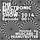 The Electronic Music Show 2014 - Ep. 01
