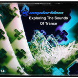 "Angular Bliss ""Exploring The Sounds Of Trance"" Vol. 14"