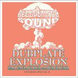 Reggaematic Veteran Dubplate Explosion II
