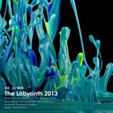 THE LABYRINTH 2013