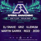 Benny Benassi - Live @ The Spring Awakening Music Festival