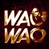 WAOWAO 2 30 november 2016 Stranded FM