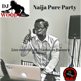 Naija Pure Party ( Live recording @ charles vs Ezinne's wedding)